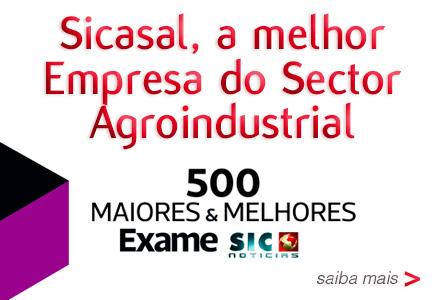 Sicasal eleita a melhor Empresa do Sector Agroindustrial