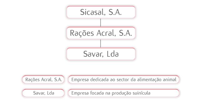 Estrutura Societária da Sicasal